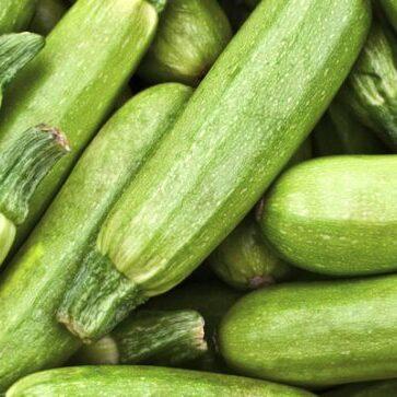 zucchine-verdi-chiare-fw-725x363